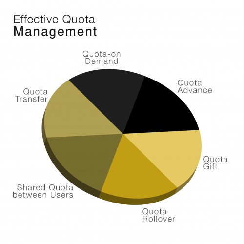 Achieve Data Monetization with Effective Quota Management